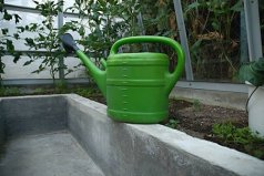 Watering can in greenhouse