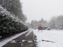 Snow Crane Driveway