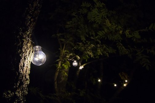 Some Outdoor Lights Hanging In A Tree