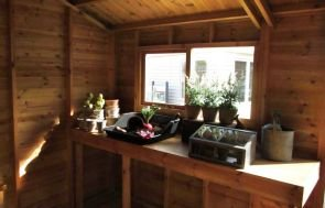 The interior of an apex roofed, attractive shed with a workbench and some potting plants spread about in an attractive fashion. The inside of the shed is natural wood with a truss across the centre.