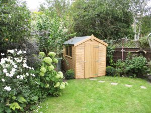 A small garden shed clad with smooth shiplap painted with light oak preservative and an apex roof covered with heavy-duty felt.