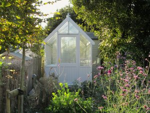 A small sized greenhouse nestled in an attractive garden with lots of wildflowers. It is painted in an exterior shade of cream and boasts smooth shiplap cladding.