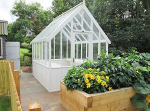 A medium sized greenhouse situated in a patio area beside planters and a small woodland. The exterior of the greenhouse is clad with smooth shiplap and painted in Ivory.