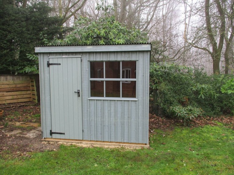 National Trust Timber Garden Shed with Corrugated Roof