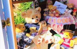 Craft Room for Bears Interior customer story